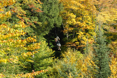 foliage boat tour zip lining