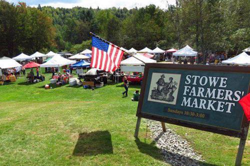 stowe area farmers market